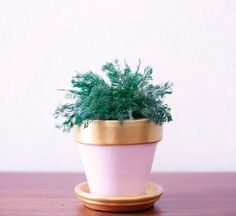 Fabulous DIY Flower Pots That Make Your Flowers Smile - The Cottage Market Cactus Flower, Flower Pots, How To Grow Cactus, Copper And Pink, Red Geraniums, Pot Plante, Painted Pots, Diy Flowers, Potted Flowers