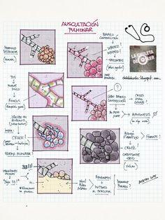 La Chuleta de Osler: Neumología - Auscultación pulmonar y diagnóstico diferencial