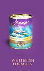Zignature Whitefish Canned Dog Food 1213oz *** You can get additional details at the image link.