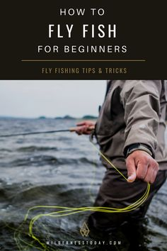 How To Fly Fish From Beginners To Advanced Learn To Fish Fishing Fly Fishing Trout Brook Trout Learn how to fly fish, from beginners to advanced.Learn how to fly fish, from beginners to advanced. Fly Fishing Basics, Fly Fishing For Beginners, Bass Fishing Tips, Best Fishing, Kayak Fishing, Fishing Tricks, Ice Fishing, Fishing Guide, Alaska Fishing