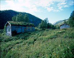 Fellestunet i Gøya – NRK Mountains, House Styles, Nature, Travel, Home, Decor, Lily, Naturaleza, Viajes