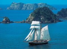 Consider sailing the Bay of Islands in a tall sailing ship!