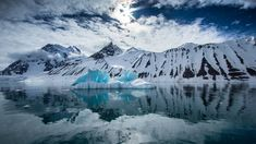 Go on an Antartica cruise! Join REI aboard comfortable ships enroute to one of the most dramatic places on Earth. Antartica Chilena, Antarctica Cruise, Norway Nature, 7 Continents, Arctic Circle, Virtual Tour, Portrait, Beautiful Landscapes, Adventure Travel