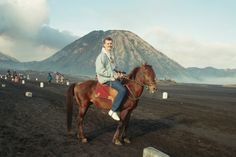 Gjennom Sea of Sand til mount Bromo Horses, Sea, Animals, Animales, Animaux, The Ocean, Animal, Ocean, Animais