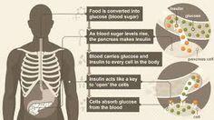 normal blood glucose vs diabetes blood glucose - Google Search