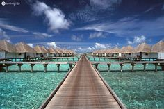 {MALDIVES} Wake up to this every morning! #purfectlychic x