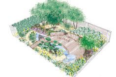 Royal bank of Canada - RHS Chelsea flower show 2015