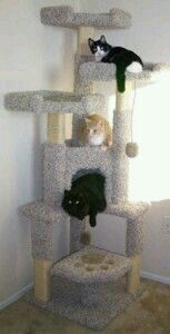 Unique Cat Tree House and like OMG! get some yourself some pawtastic adorable cat apparel! Cat Tree House, Cat Tree Condo, Diy Cat Tree, Cat Activity, Interactive Cat Toys, Cat Towers, Cat Enclosure, Cat Room, Pet Furniture