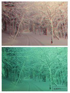 """C'è il trucco e c'è l'inganno! """"#MAGIA"""" da #PRECINEMA!  Un #ANAGLIFO è un'immagine #stereoscopica,  che, se osservata mediante appositi occhiali dotati di due filtri di colore complementare l'uno rispetto all'altro, fornisce una illusione di tridimensionalità. Foto: Alberto Sacco"""