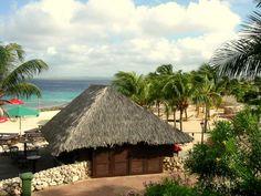 Bilety lotnicze na Bonaire - Przewodnik Bonaire Antyle Holenderskie - www.cp-online.pl