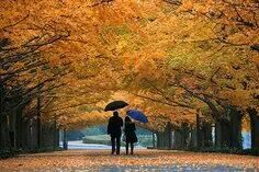 Love autumn colors and going for a walk with my love.