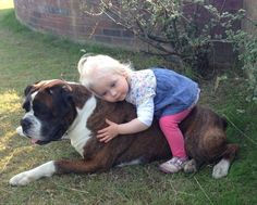 her best friend. Nothing cuter than a boxer and his baby.