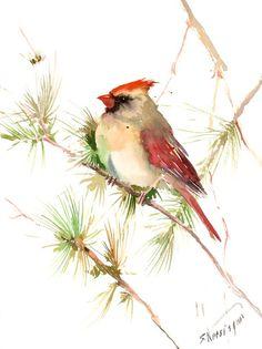 Female Cardinal Bird 15 X 11 in original by ORIGINALONLY on Etsy