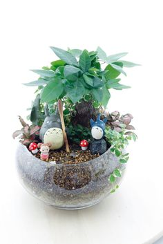 645 Best Miniature Terrarium Images In 2019 Miniature Gardens