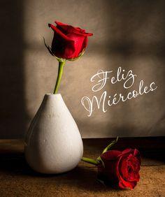 """BANCO DE IMÁGENES: 12 postales con flores y mensajes de """"Feliz Miércoles"""" que puedes compartir con tus amigos en redes sociales"""