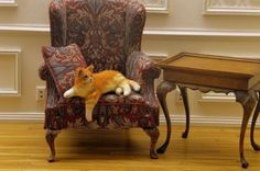 OOAK-1-12-dollhouse-miniature-orange-tabby-cat-furred-IGMA-Fellow-Linda-Master