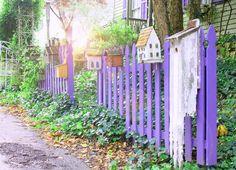 cottage living pinterest | cottage 960 vintage finds, photography, an inspired life: happy purple ...