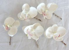 White Orchid hair fascinators mini real touch phalaenopsis orchid hair clips bridal hair clip tropical fascinator