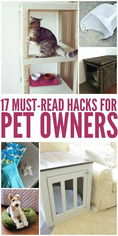 17 Hacks Every Pet Owner Needs to Read