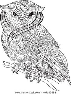 Hand drawn Coloring pages with owl , illustration for adult anti stress Coloring books with high details isolated on white background. monochrome sketch