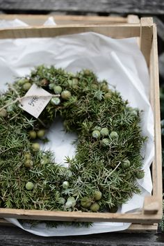 Evergreen wreath with sage colored berries, carefully packed in a tissue-lined wood crate