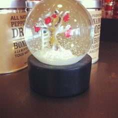 Roots Snow Globes, available in our Home Store and in select locations! #findwhatyoulove