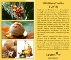 #Mangalwaryantra  #rudralife #rudaksha  #Pujayantra