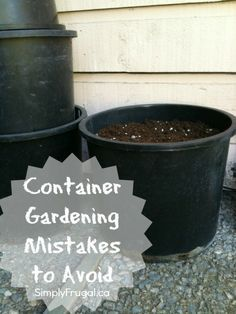 Here are 5 container gardening mistakes to avoid. She also has a ton of different posts about container gardening including what veggies to plant, how to get started, etc.