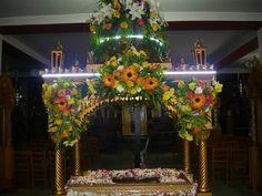 Holi, Jesus Christ, Projects To Try, Saints, Flowers, Holi Celebration
