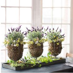20 Cute Rustic Centerpieces For Easter - Shelterness Easter Flowers, Easter Tree, Spring Flowers, Easter Bunny Decorations, Easter Decor, Rustic Centerpieces, Indoor Planters, Easter Holidays, Easter Crafts For Kids