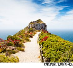 Daily Destination: Cape Point, South Africa @Visit South Africa