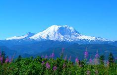 Mt. Rainier...end of summer splendor