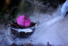 Steaming pot, liquid nitrogen, Still life photography