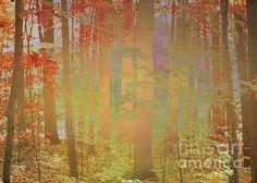 """Autumn Magickly"" ...enhanced photographic print..."
