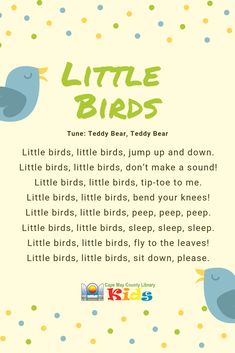 A great action rhyme to engage fidgety little ones in storytime or in the classroom! Perfect for bird, spring, and forest themes. Head over to the - Education and lifestyle Rhyming Preschool, Nursery Rhymes Preschool, Preschool Music, Preschool Learning, Spring Songs For Preschool, Spring Songs For Kids, Preschool Transition Songs, Preschool Action Songs, Preschool Circle Time Songs