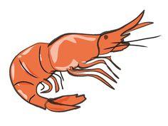 peta and the story of the dancing shrimp dumbass news pinterest rh pinterest com Lobster Clip Art Catfish Clip Art