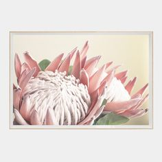 Artworks - Buy Art Online for a Great Home Transformation Canvas Art Prints, Framed Art Prints, Protea Art, King Protea, Buy Art Online, Cool Artwork, Amazing Artwork, Flower Photos, Creative Art