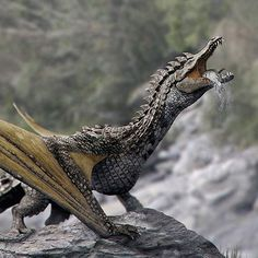Alien Creatures, Fantasy Creatures, Mythological Animals, Dragon Artwork, Otters, Crocodile, Mythology, Outer Space, Game