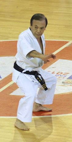 Kyudokan Higa Te Okinawan Karate, Kung Fu, Martial Arts, Masters, Vintage, Master's Degree, Combat Sport, Vintage Comics, Martial Art