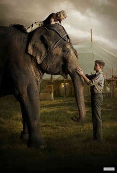 This movie makes me wanna run away and join the circus. I love it soo muchhhh