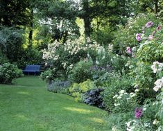 Organic Gardening Magazine Back Issues Back Gardens, Outdoor Gardens, Shade Garden, Garden Plants, Organic Gardening Magazine, Hydrangea Landscaping, Backyard Plan, Garden Online, Sloped Garden