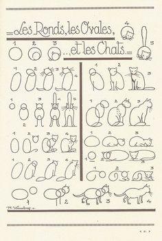 Ovalos y formas