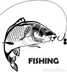Carp fish,  illustration