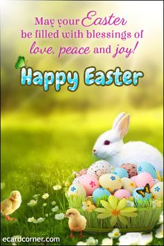 Easter Card Sayings, Easter Greetings Messages, Happy Easter Quotes, Happy Easter Wishes, Happy Easter Greetings, Easter Greeting Cards, Easter Wishes Pictures, Wishes Images, Inspirational Easter Messages