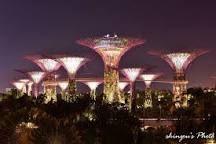 「シンガポール 植物園」の画像検索結果
