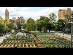 An agrihood is an idea copyrighted by luxury developments. But one non-profit is making the first urban agrihood to help the people of Detroit. Keep Bugs Away, Sensory Garden, Problem And Solution, Ann Arbor, Urban Farming, Great Lakes, Habitats, Acre, Detroit