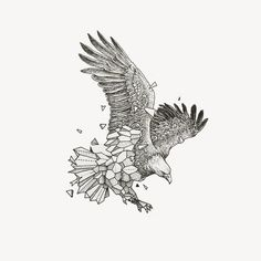 Eagle by Kerby Rosanes