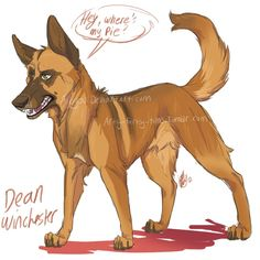 spn dogs: Dean by Aibyou on DeviantArt