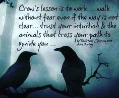 Crow Spirit Animal, Animal Spirit Guides, Animal Meanings, Animal Symbolism, Crow Meaning, Crow Facts, Crow Painting, Magick, Witchcraft