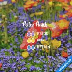 Tension Relief - Essential Oil Diffuser Blend- Try barefūt Essential oils today. organically grown, ethically produced and free from chemicals or pesticides. Our oils do not contain fillers, additives, or any other type of dilution.